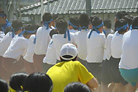 Img_0799a_2