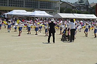 Img_0863a