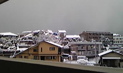 大雪…さまさま